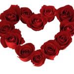 Pretty-Roses-roses-16093204-1600-1200